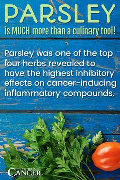 Did you know about parsley's anti-inflammatory properties? Parsley is MUCH more than a culinary tool! Parsley was one of the top fours herbs revealed to have the highest inhibitory effects on cancer-inducing inflammatory compounds. Click on the image above to learn more as Dr. David Jockers shares the health benefits of parsley, 3 ways parsley reduces your cancer risk plus 4 healthy parsley juice recipes for better health! Please re-pin. Together we can eradicate cancer with a healthy…