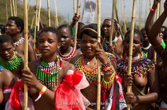 Zulu maidens deliver reed sticks to the King, Zulu reed dance at eNyokeni Palace, Nongoma, South-Africa