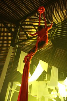 Aerial silks. I want to take lessons and learn to do this!