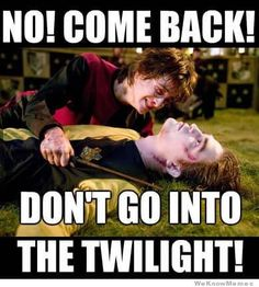 Image result for harry potter memes