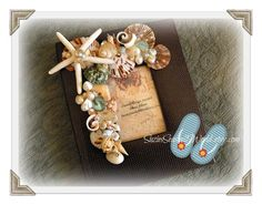 Sunset Beach Seashell Photo Album by SuziesSeashellWorld on Etsy, $35.00