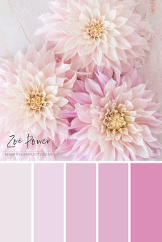 Pastel Colour Palette Collection of Prints, Cards, Notebooks and more — Beautiful Simplicity