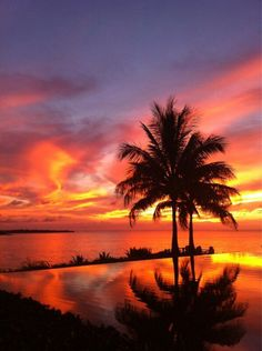 Palm Paradise, sunset on the beach