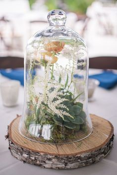 Rustic Bell Jar Terrarium Wedding Reception Centerpiece on Wood Slab / http://www.himisspuff.com/glass-cloche-bell-jar-wedding-ideas/7/