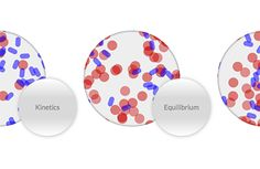 Chemical Kinetics and Equilibrium icon