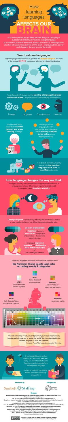 Educational infographic : How Does Learning A New Language Affect Your Brain?