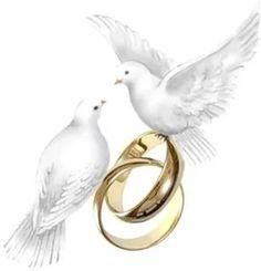 Wedding Doves, Wedding Art, Wedding Pics, Doodle Wedding, Wedding Drawing, Wedding Silhouette, Silhouette Clip Art, Wedding Booklet, Wedding Shower Cards