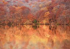 Photographer MASATO SAITO   Autumn Reflection  ONE EYELAND
