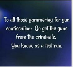 Go confiscate the criminal's guns as a test run! Personal Rights, Political Quotes, Say That Again, Gun Rights, Conservative Politics, Change Is Good, Badass Quotes, Way Of Life, Great Quotes