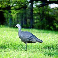 Flambeau SF00845 Feather Flex Decoys Turkey Hen Decoy with Stake : Hunting Decoys : Sports & Outdoors