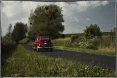 A 1/43th-scale European car models in Normandy France.  Fiat 500.