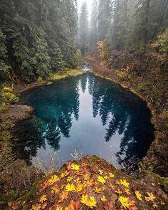 he Tamolitch Blue Pool - McKenzie River Trail. Oregon