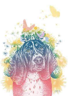 Orie Kawamura drawing 【Flower bloom】Peuku Magazine 表紙#dogillust #design #動物イラスト #犬 #dog #イラスト #デザイン #イラスト #細密画 #絵 #おしゃれイラスト Rooster, Bloom, Drawing, Illustration, Flowers, Animals, Animales, Animaux, Sketches