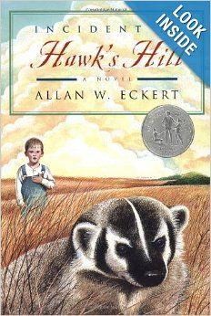 Incident at Hawk's Hill: Allan W. Eckert: 9780316209489: Amazon.com: Books
