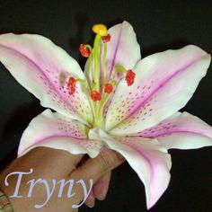 Flores porcelana Fria: Lirio Paso a Paso / Cold porcelain Flowers How to...