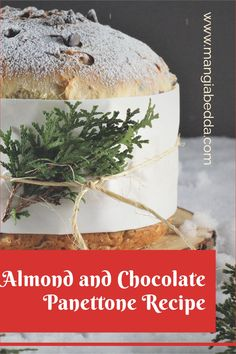 Homemade panettone without the use of a panettone mold! #panettone #chocolatepanettone