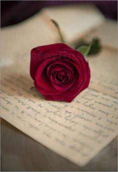 Jaroslaw Blaminsky - Red rose on love letter Love Rose Flower, Beautiful Rose Flowers, New Nature Wallpaper, Wallpaper Backgrounds, Love Letters Image, Rose Flower Wallpaper, Book Flowers, Beautiful Flowers Wallpapers, Belle Photo