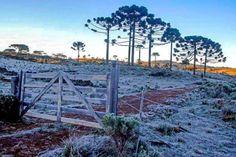 Serra Catarinense e suas belezas do inverno