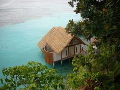 Misool Eco Resort Scuba diving offers two levels of accommodation. The deluxe Water Cottages are located in the North Bay, built on stilts over the water. Dive Resort, West Papua, Cold Shower, Education Architecture, Places To Go, Cottage, House Styles, Building, Scuba Diving