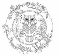 Owl Coloring Page For Adults from Animal Coloring Pages category. Printable coloring pictures for kids you could print and color. Have a look at our collection and print the coloring pictures for free. Adult Coloring Pages, Forest Coloring Pages, Animal Coloring Pages, Coloring Pages To Print, Printable Coloring Pages, Colouring Pages, Free Coloring, Coloring Books, Coloring Letters