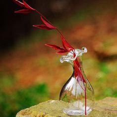 2 Pcs Morning Glory Shape Glass Vase for Home Table by VaporFan