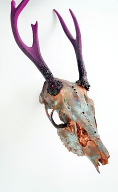 Painted Deer Skull Taxidermy // Urban Inspiration // by MyrandaE, $235.00