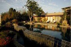 Pool design - Home and Garden Design Ideas