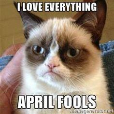 Grumpy Cat  - I love everything april fools