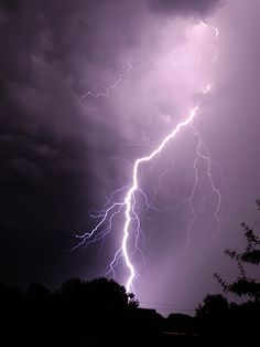 """STRIKE!"" by ChicagoKoz, via Flickr Front seat in the backyard .."