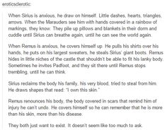 the marauders - sirius and remus