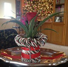 Evolution Revolution: Christmas Craft: DIY Candy Cane Vase