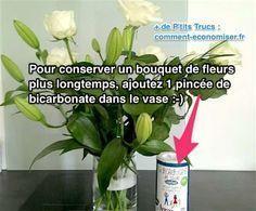 Il existe des astuces efficaces pour conserver la fraîcheur d'un bouquet de fleurs coupées. Alors quoi mettre dans l'eau pour les garder plus longtemps ? Tout ce dont vous avez besoin, c'est d'un peu de bicarbonate, de vinaigre blanc et de sucre. Découvrez l'astuce ici : http://www.comment-economiser.fr/2-astuces-pour-conserver-bouquet-de-fleurs.html?utm_content=buffer5e352&utm_medium=social&utm_source=pinterest.com&utm_campaign=buffer
