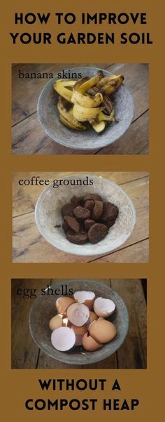 How To Improve your Garden soil without a compost heap - An easy way to recycle kitchen waste directly in your soil. Garden Soil, Dog Bowls, Compost, Garden Design, Backyard, Decor, Diy Compost Bin, Decoration, Patio