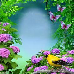 "Képtalálat a következőre: ""imikimi"" Green Screen Video Backgrounds, Flower Backgrounds, Photo Backgrounds, Wallpaper Backgrounds, Screen Wallpaper, Photo Background Wallpaper, Photo Background Images, Frame Background, Boarders And Frames"