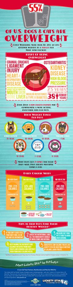 The skinny on overweight pets from @PetSafe Brand