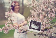 Cherry Blossoms Maternity Photo Session - Lana Sky Photography, maternity posing and photo ideas, Seattle Maternity photographer, Ultrasound photo ideas.