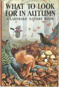 Find Vintage and Classic Ladybird Books in the Ladybird Bookshop. First editions and rare Ladybird books. Vintage Book Covers, Vintage Children's Books, Old Books, Ladybird Books, Beautiful Book Covers, Papi, Children's Book Illustration, Book Illustrations, Autumn Illustration