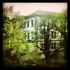 La mia bellissima biblioteca di Alpignano, modesta ma ha tutto  #LnM #rudetorino