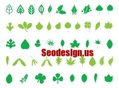 seodesign.us Best Vector Graphics - Green Leaves Icons #graphics #icons #leaves