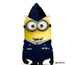 Air force minion