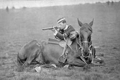 Around 10 million horses were lost during the whole Great War. Likely moreso than all armed conflicts together since Man started using horses in warfare.