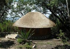 Modjadji Camp Camping, Culture, Places, Campsite, Outdoor Camping, Rv Camping, Lugares