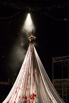 High fliers: NoFit State circus presents Bianco - in pictures