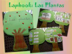 Maestra de Pedagogía Terapeutica: marzo 2013 Plant Science, Science And Nature, Interactive Notebooks, Mini Books, Projects For Kids, Kindergarten, Homeschool, Teaching, Education