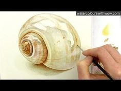 Painting a Realistic Shell in Watercolor by Anna Mason Watercolor Video, Watercolor Tips, Watercolour Tutorials, Watercolor Techniques, Watercolour Painting, Painting Techniques, Watercolours, Painting & Drawing, Painting Lessons