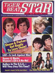 1977 Tiger Beat Star Teen Magazine May Hardy Boys Donny Marie Bay City Rollers | eBay