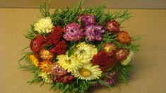 Bastelideen im Herbst: Trockenblumenstrauß mit Strohblumen Diy Deko Idee /    YouTube Anleitung : Deko Ideen mit Flora-Shop
