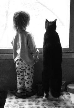 Kids and kittens. Cute Kittens, Cats And Kittens, Ragdoll Kittens, Tabby Cats, Bengal Cats, Crazy Cat Lady, Crazy Cats, Here Kitty Kitty, Sleepy Kitty
