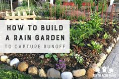 Learn how to build a rain garden that captures rainwater runoff from hard surfaces, such as a roof or pavement, for irrigation or to reduce water pollution. Rain Garden, Lawn And Garden, Garden Beds, Vegetable Garden Planner, Vegetable Gardening, Veggie Gardens, Container Gardening, Compost Soil, Worm Composting