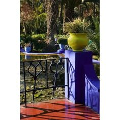 Villa Gardens Jardin Majorelle and Museum of Islamic Art Marrakech Morocco Canvas Art - Walter Bibikow DanitaDelimont (11 x 17)
